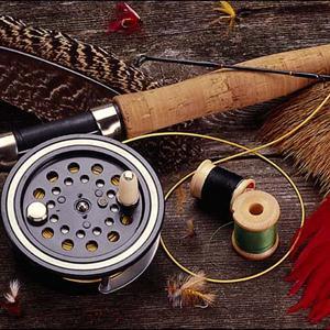 Охотничьи и рыболовные магазины Терека